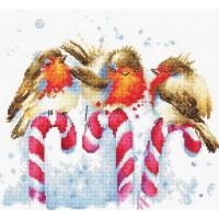 Набор для вышивания крестом Luca-S Рождественские птицы (B1154)