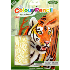 Тигр в джунглях (CPNMIN.104)
