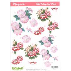 3D карта Розы (P000102)