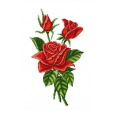 Букет красных роз (ЦВ-007)
