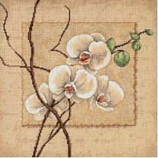 Восточные орхидеи (35176)