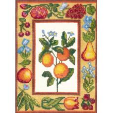 Апельсины (55-07)