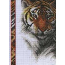 Тигр (13-0261)