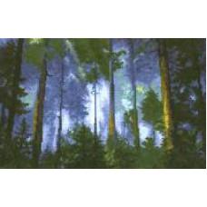 Сосновый лес (334)