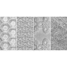 Текстурные пластины для пластика Set C (Honeycomb/Eyelet/Weave/Lace) (380-3)