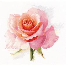 Набор для вышивания крестом Алиса Дыхание розы. Нежность (2-40)