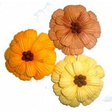 Бумажные цветы Prima Dandies #6 (528775) - эконом-пакет