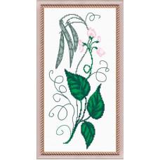 Душистый горошек розовый (388)