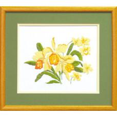Желтые нарциссы (ГЛ-015)