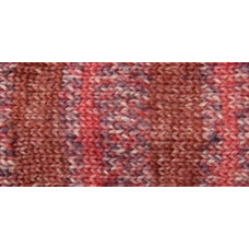 Носочная пряжа Deborah Norville Collection Serenity Sock Yarn, Purple Spice (DN104-04)