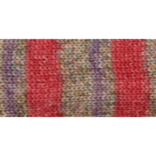Носочная пряжа Deborah Norville Collection Serenity Sock Yarn, Paprika (DN104-05)