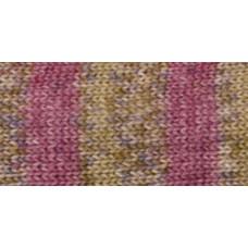 Носочная пряжа Deborah Norville Collection Serenity Sock Yarn, Chili (DN104-07)
