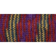 Носочная пряжа Deborah Norville Collection Serenity Sock Yarn, Tanzanite (DN108-05)