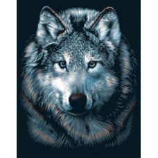 Набор для выцарапывания Scraperfoil Kit, Волк (PPSF 27)