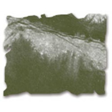 Дистрессинговые чернила Ranger Distress Ink™ Pad Forest Moss (27133)