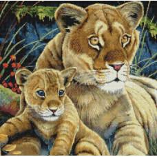 Львица и львенок - Lioness and Cub (#99873)