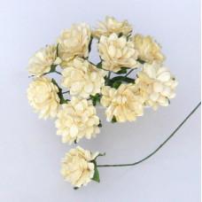 Бумажные стебельчатые цветы астры, кремовые (NS071)