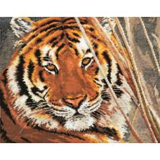 Тигр (1-08)