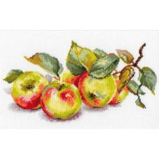 Яблоки (5-09)