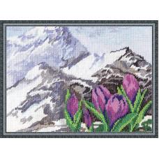 Альпийские цветы (Ц-952)*