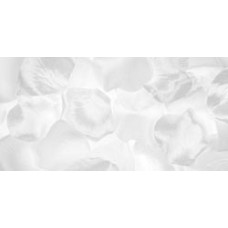 Лепестки роз шелковые, белые (RC- 7210 - 00)
