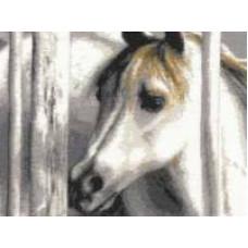 Белый жеребёнок (З-003)*