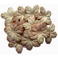 Бумажные цветы Кремовые (P20-75)