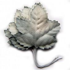 Кленовые листья пепельные (LO-425)