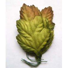 Листья с коричневой верхушкой (L4-1)