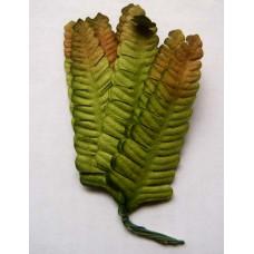 Листья зелено-коричневые (B14-1)