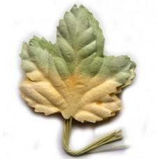 Листья жёлто-салатовые (LO-720)