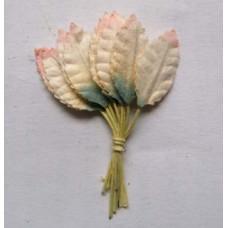 Листья салатово-розовые (L1-310)
