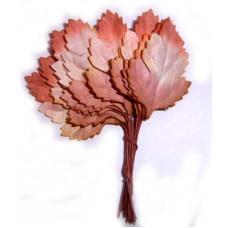 Листья розово-коричневые (L4-700)