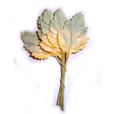Листья (L4-721)