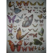 Бумага для декупажа Бабочки, газет. (ЕВ-Д008)