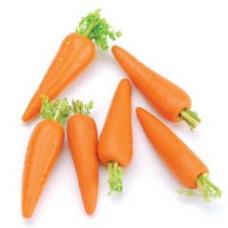 Морковка миниатюрная, 6 шт. (2306-10)