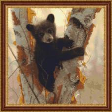 Шалунишка - Curious Cub (3505)