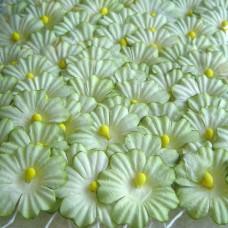 Бумажные цветы, зеленые (NF-00020)