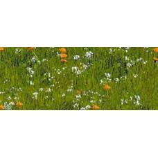 Картон Зеленый луг, 300 г. (UR-12722209R)