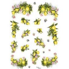Бумага рисовая Лимоны и цветы (маленькие) (DC-5024)