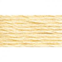 DMC Perle Cotton Size 8 - #3823