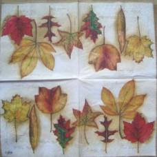 Салфетка Гербарий осенних листьев (194)