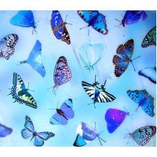 Калька Бабочки, голубой (UR-50514603R)