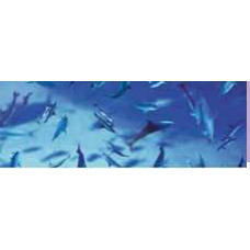 Калька Море, Дельфины 115 г. (UR-50634604R)