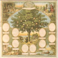 Лист бумаги 30х30 Ancestry Traditional Family Tree (645844) (153)