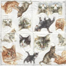 Салфетка Коты и котята (211)