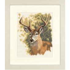 Олень - Red Deer (PN8125)