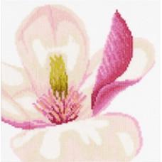 Цветок магнолии - Magnolia Flower (PN8163)