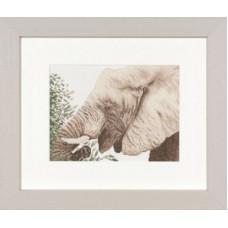 Слон - Grazing Elephant (PN8324)