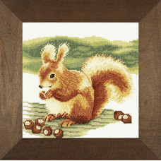 Белочка - Nibbeling Squirrel (PN8179)